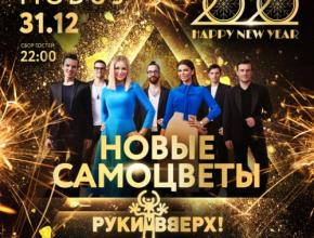 31 декабря / вторник HAPPY NEW YEAR 2020