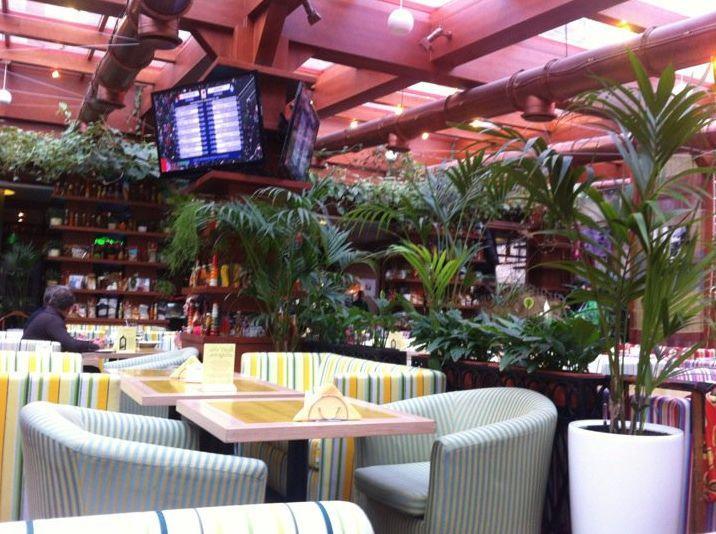 Итальянское Кафе Фреско на Фрунзенской (Cafe Fresco) фото 34