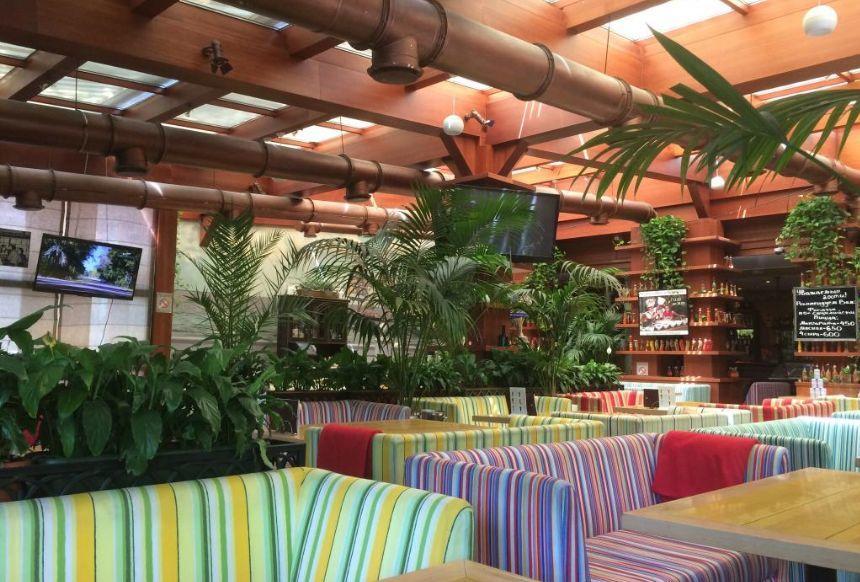 Итальянское Кафе Фреско на Фрунзенской (Cafe Fresco) фото 36