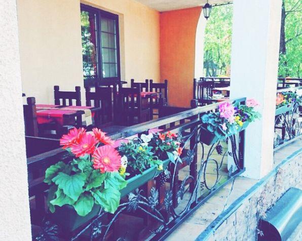 Грузинский Ресторан Иверия (Iveria) фото 13
