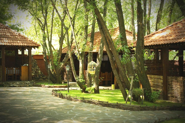 Грузинский Ресторан Иверия (Iveria) фото 9