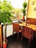 Пивной ресторан ШтирБирЛиц на Октябрьской (ШтирЛиц) фото 10