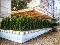 Грузинский Ресторан Сентябрь на Новом Арбате фото 4