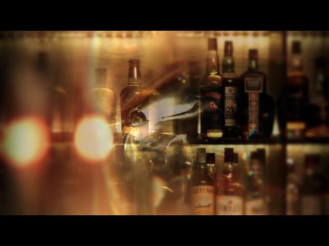 ��� The Wild Donkey Bar ���� 6