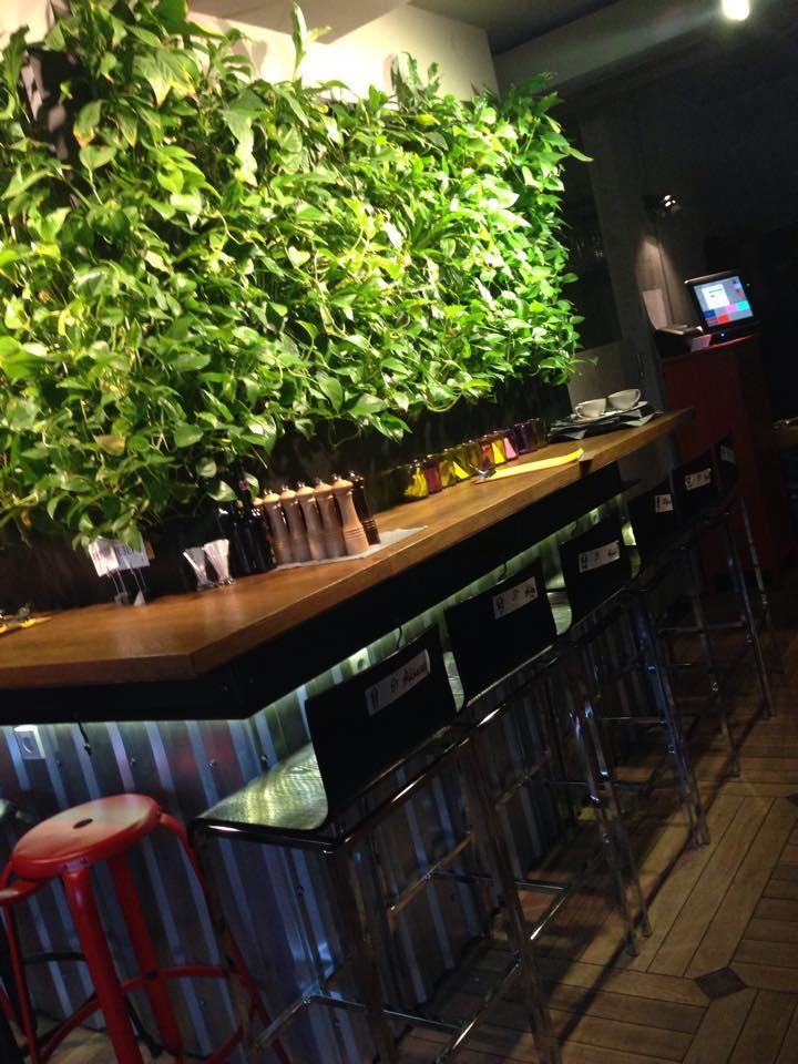 Ресторан Shaggy Dog (Шегги Дог) фото 17