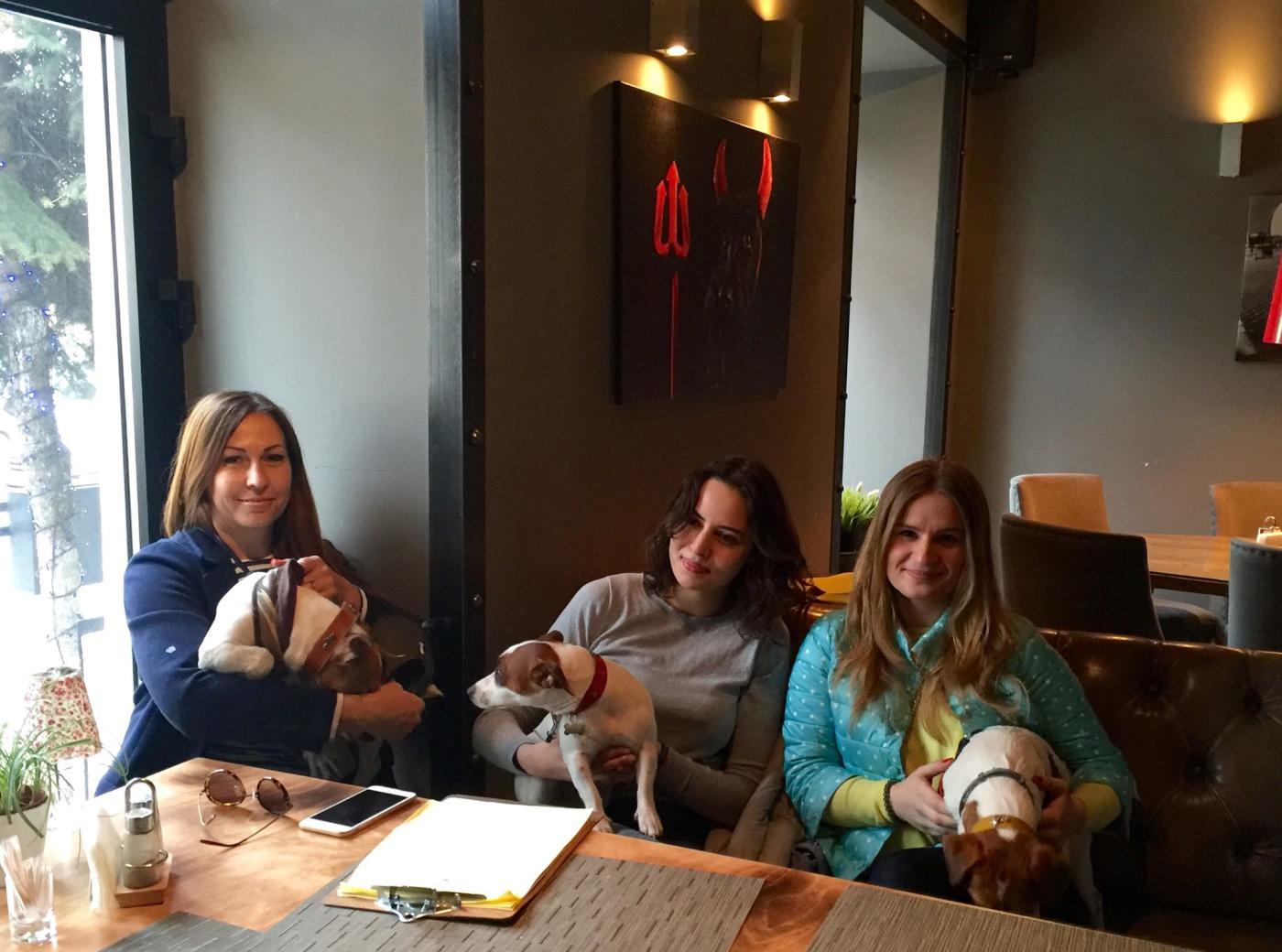 Ресторан Shaggy Dog (Шегги Дог) фото 27