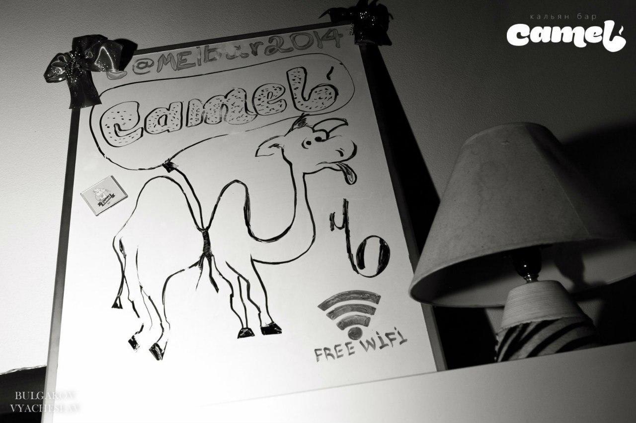 Кальянная Camel на Коломенской (Верблюд) фото 13