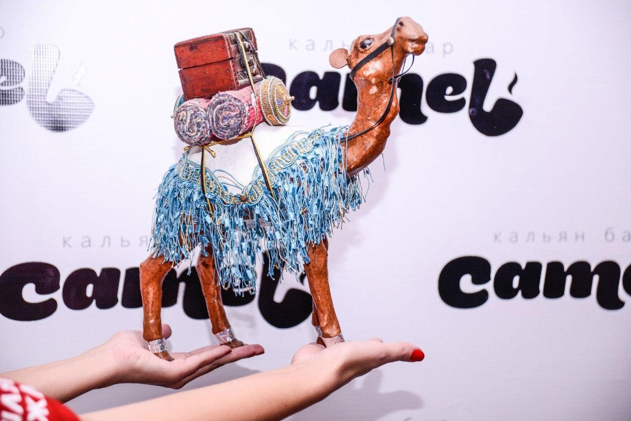 Кальянная Camel в Люблино (Верблюд) фото 13
