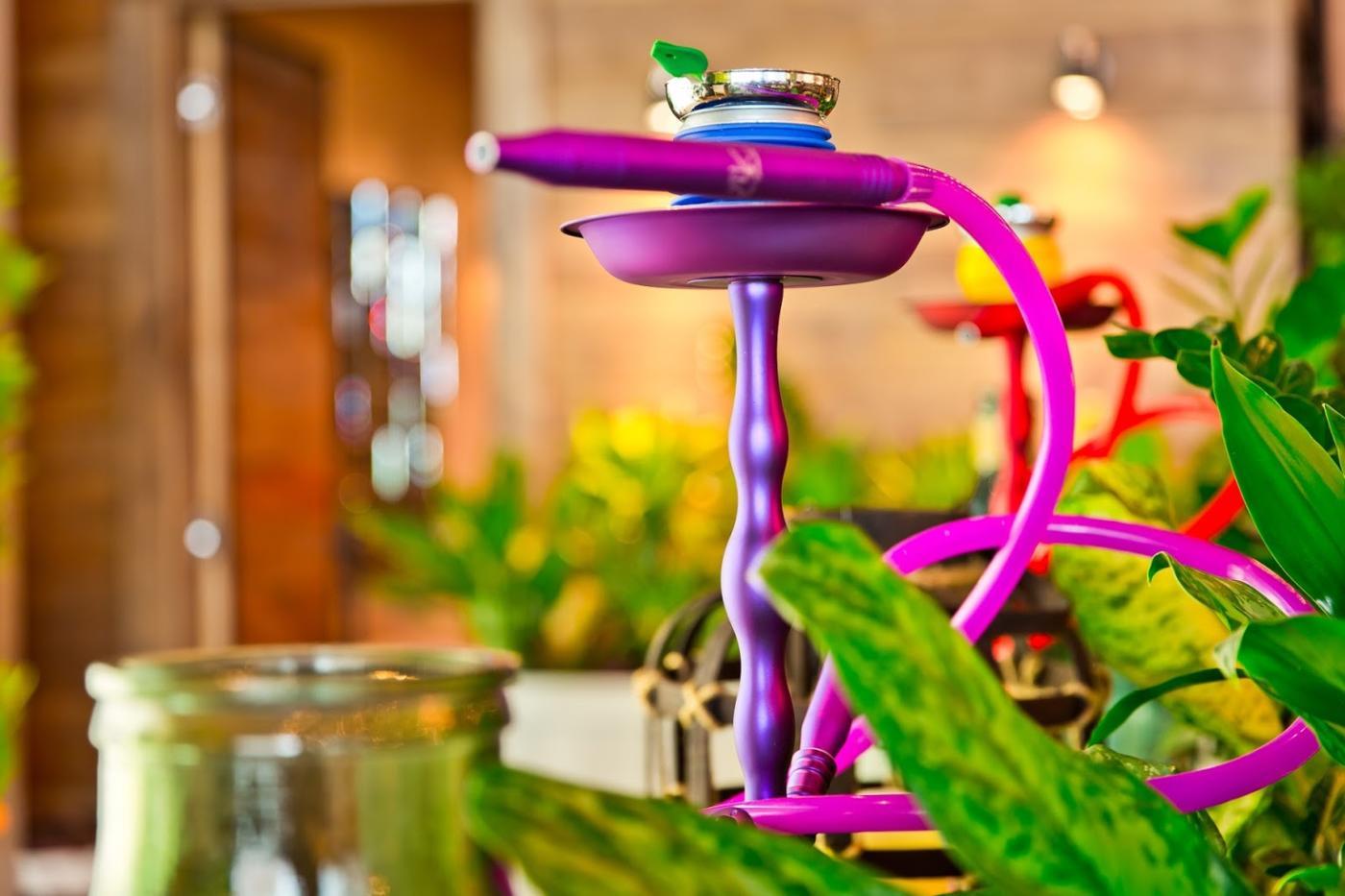 Ресторан Кин Дза Дза на Мичуринском проспекте (Кинза-Дза) фото 3