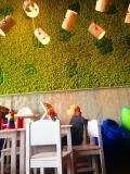 Ресторан Кин Дза Дза на Мичуринском проспекте (Кинза-Дза) фото 37
