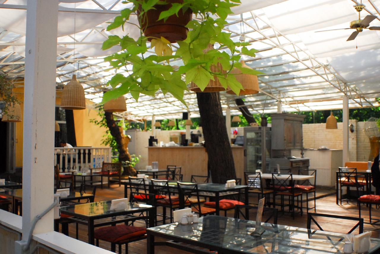 ���� ��� (Lounge Cafe) �� ������������� ���� 14