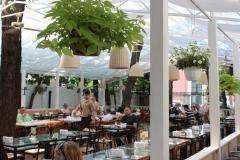 ���� ��� (Lounge Cafe) �� ������������� ���� 10
