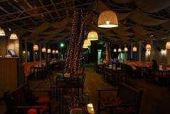 ���� ��� (Lounge Cafe) �� ������������� ���� 13