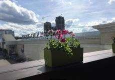Роуз Бар в ТЦ Крокус Сити Молл (Rose Bar Crocus City Moscow) фото 39