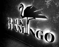 Банкетное фото 10 Black Flamingo