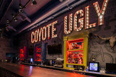 Бар Гадкий Койот на Арбате (Coyote Ugly) фото 7