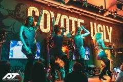 Бар Гадкий Койот на Арбате (Coyote Ugly) фото 19