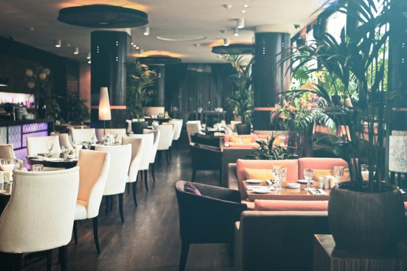 Ресторан Zafferano в ТЦ Lotte Plaza (Зафферано) фото 12
