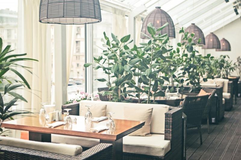 Ресторан Zafferano в ТЦ Lotte Plaza (Зафферано) фото 9