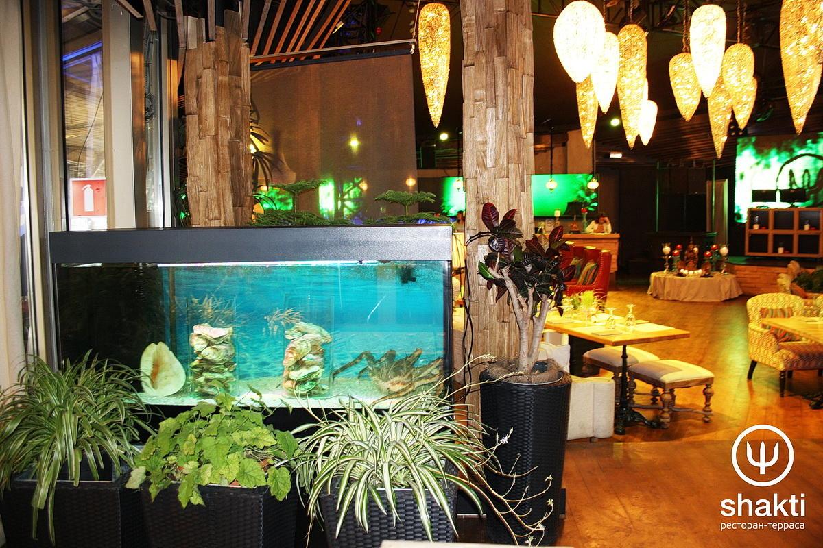 Ресторан Shakti Terrace (Шакти Терраса) фото 27